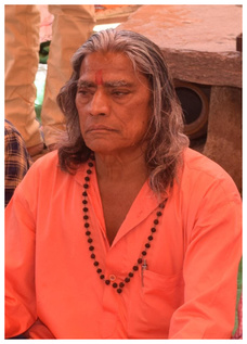 Swami Shri Mohan Maharaj